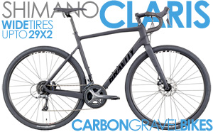 Full Carbon, DISC Brakes, Shimano CLARIS 3X8Spd, NEW WTB Tubeless Compatible Rims
